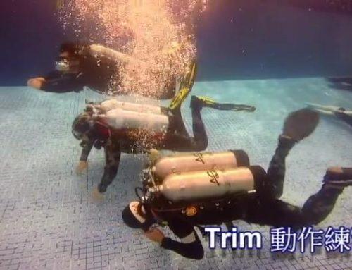 深度潛水【TDI (Intro To Tech)雙氣瓶課程】泳池篇