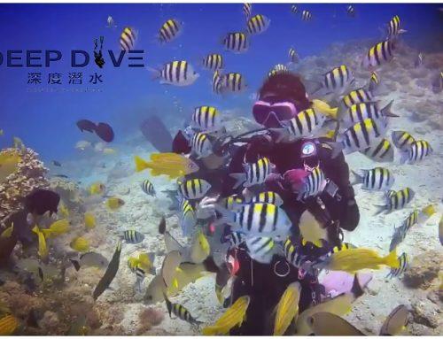 深度潛水-第一次的水下呼吸【體驗潛水】